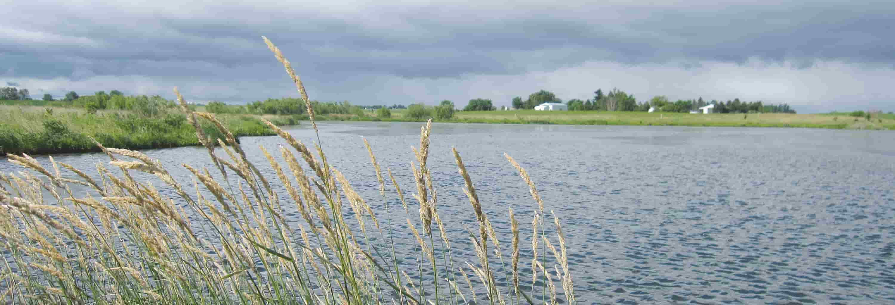 Small body of water with some prairie grass and cloudy sky