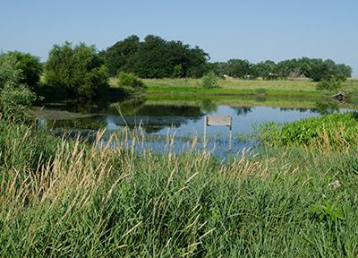 Edge of field practice helping improve Iowa water quality