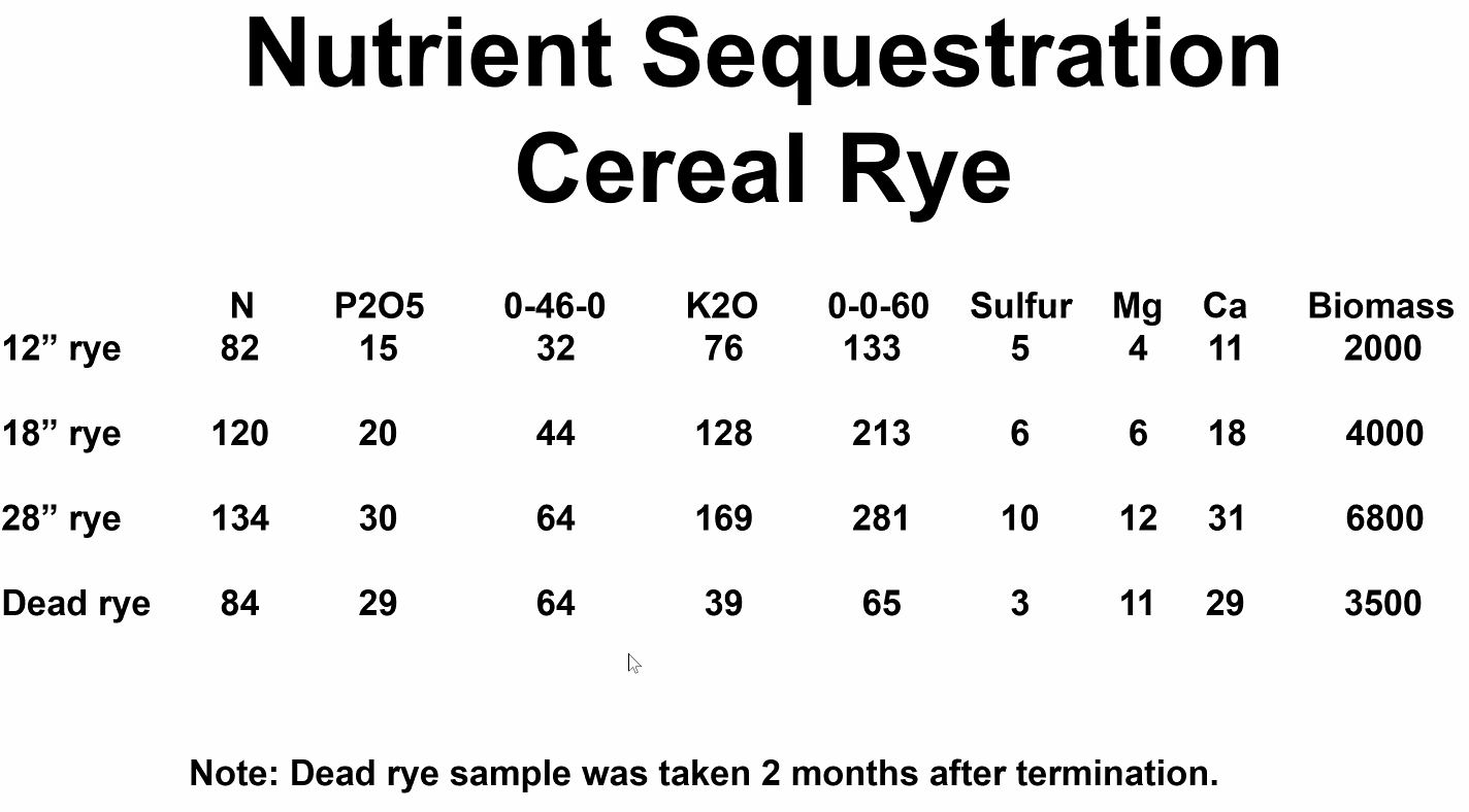 Cereal rye nutrient sequestration by size growth.