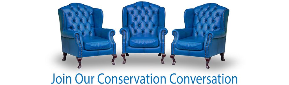 Three blue chairs to join our Conservation Conversation