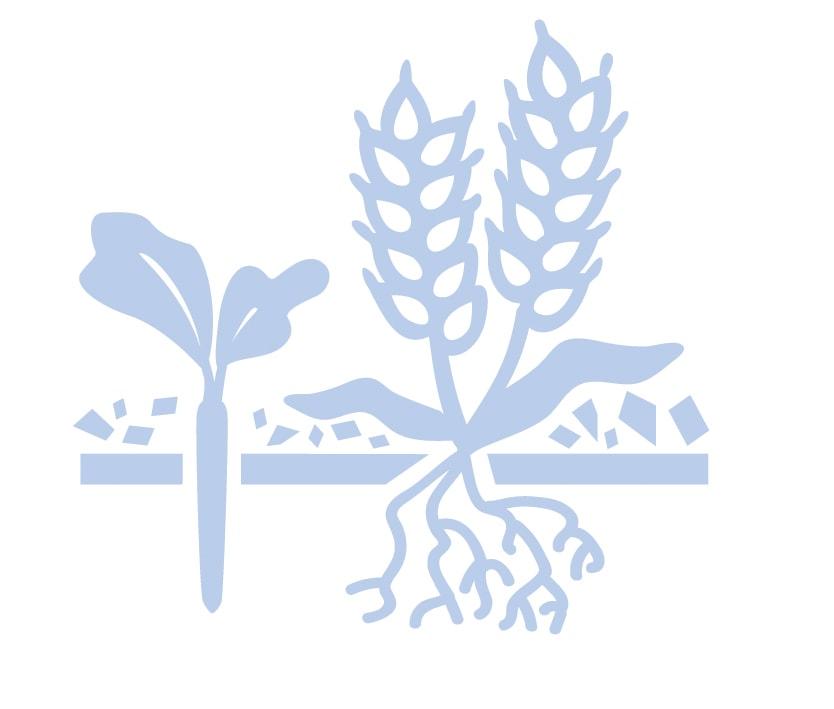 Cover crops icon