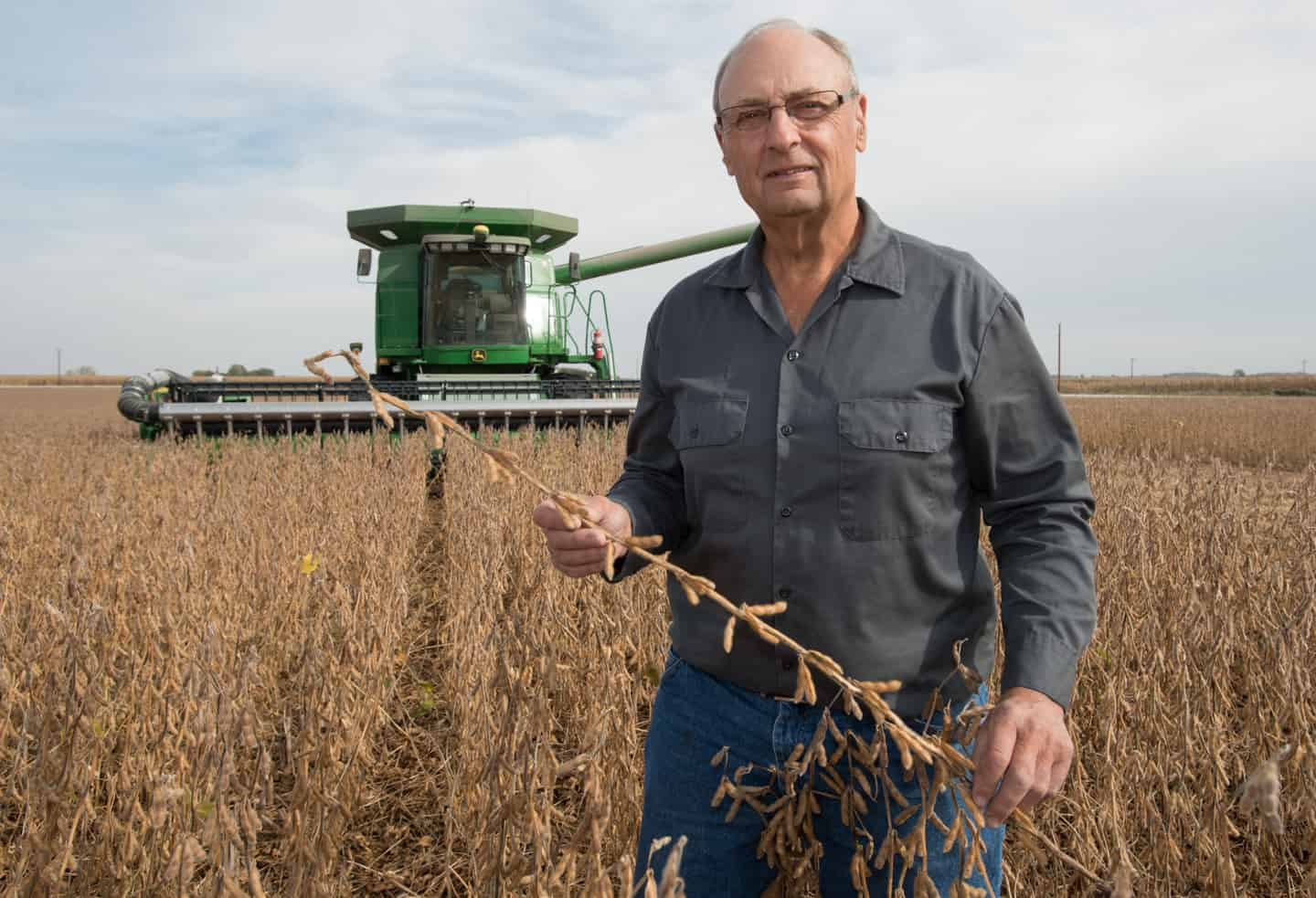 Wayne Fredericks in his field of soybeans