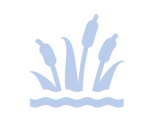 Light blue Constructed Wetlands IAWA practice icon