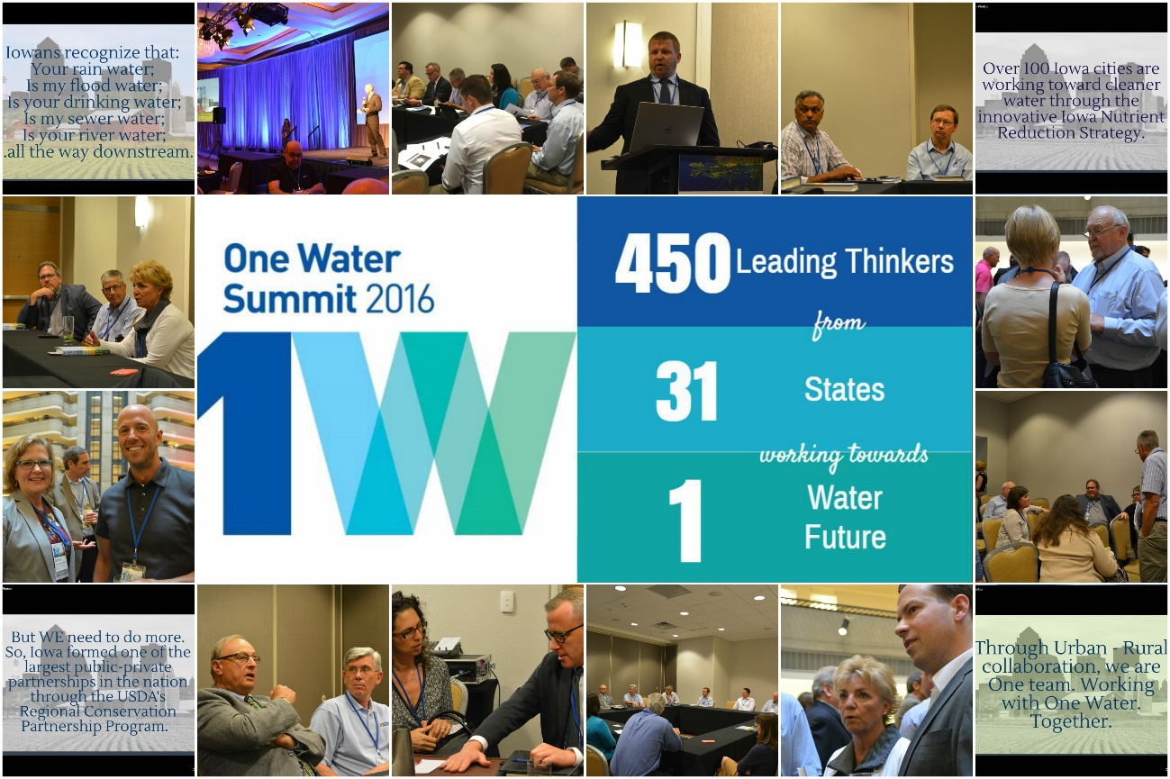 One Water Summit 2016 Info-graphic