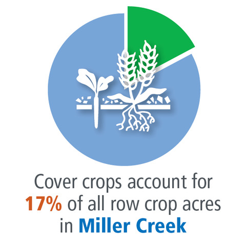 Cover Crops in Miller Creek Watershed
