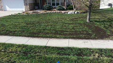 Added compost to an existing lawn.